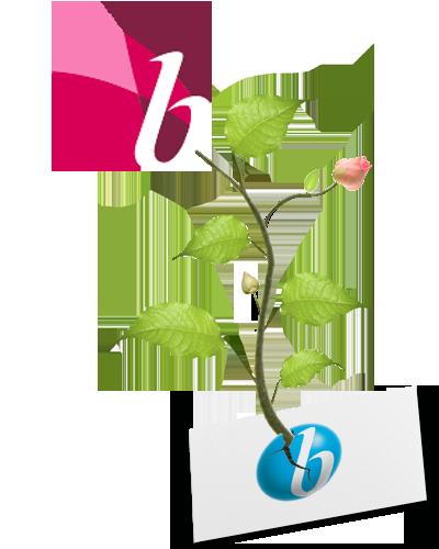 BC_History_Flower_v2